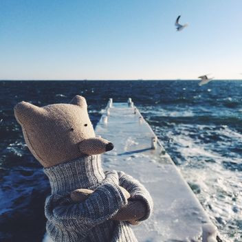 A bear is standing and thinking on the sea pier - image #136423 gratis