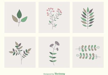 Leaves & Branches Vectors - vector gratuit #145553