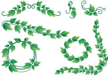 Lovely Ivy Vine Vectors - бесплатный vector #145883