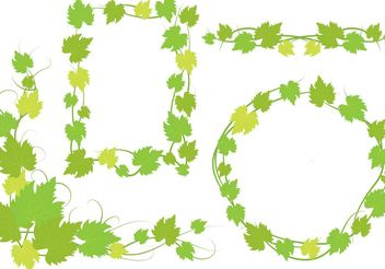 Ivy Vine Leaves Designs - vector gratuit #146033