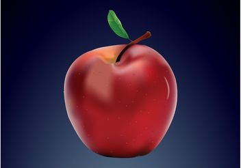 Realistic Apple - Free vector #146383