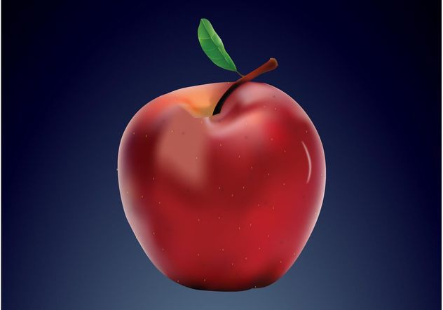 apple realista - Free vector #146383