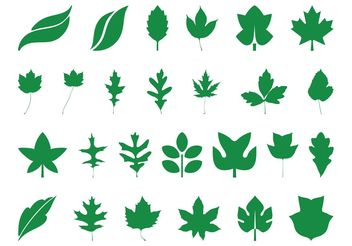 Leaves Silhouettes Set - vector #146413 gratis