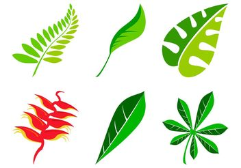 Leaves Set - vector gratuit #146463