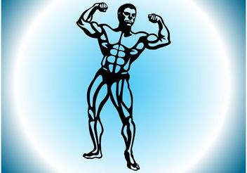 Muscular Man - vector gratuit #148553