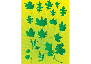 Leafs Vector Graphics - vector gratuit #152823
