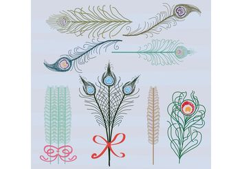 Vector Feathers Birds of Paradise Color - Free vector #156773