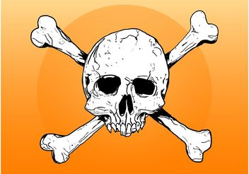 Skull And Bones - vector gratuit #156853