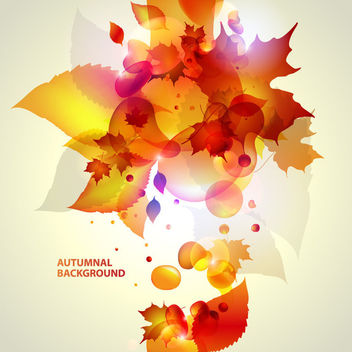 Shiny Autumn Leaves Background - Free vector #163253