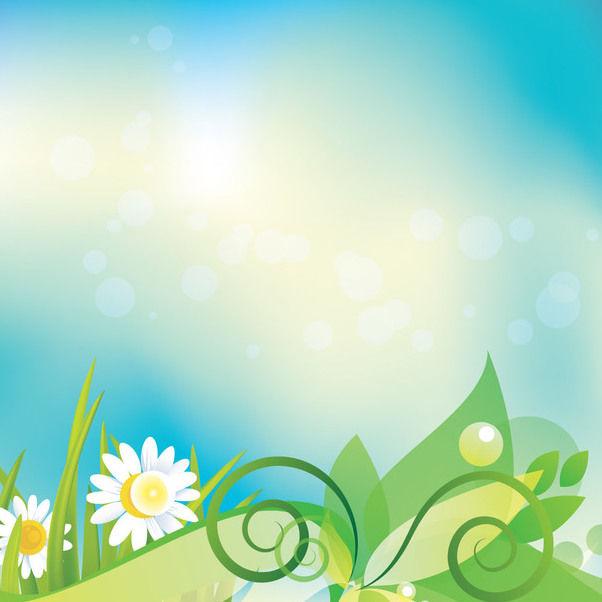 t u00e9l u00e9chargement du vecteur gratuit   daisy floral fond color u00e9 de pied de page