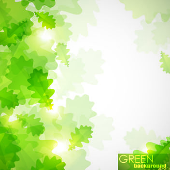 Bright Sunlight with Green Leaves in Front - vector gratuit #165423