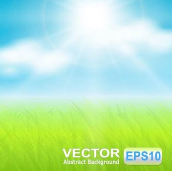 Realistic Sunny Sky with Grassy Ground - vector gratuit #166723