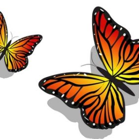 Pair of Colorful Butterflies - vector gratuit #168863