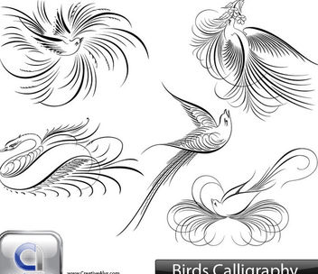Creative Calligraphic Bird Pack - Free vector #170853