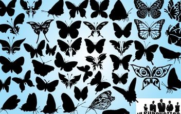 Butterfly Pack in Several Poses - Free vector #173683