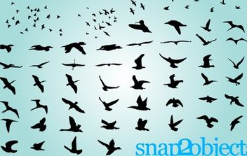 Birds Flying Group and Separately - vector gratuit #173953