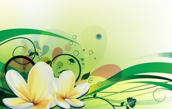 Vector illustration with plumeria - vector gratuit #178193