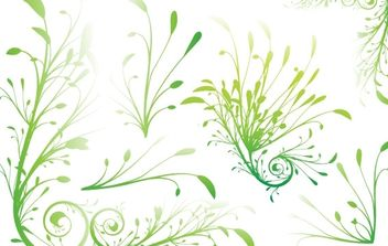 Leaf Beaujungka - vector #178303 gratis