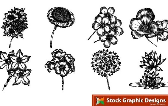 Free beautiful vector flowers pack. In pack 15 flower designs in eps format - Free vector #178573