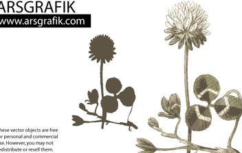Dandelion Flower Vector - бесплатный vector #178943