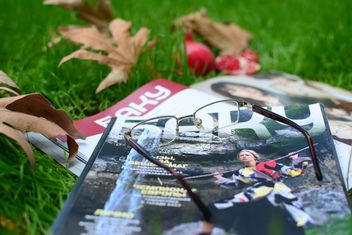 Magazines, pomegranates and dry autumn leaves - image #182773 gratis