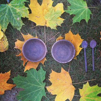 Purple bowls and spoons on autumn maple leaves - image #183653 gratis