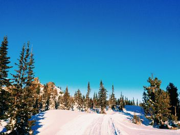 Winter landscape under cloudless blue sky - Kostenloses image #183993