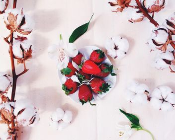 strawberry with cotton blossom - image #184163 gratis