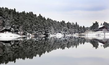 Pond in winter - image #185953 gratis