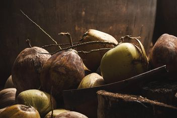 Close-up of ripe coconuts - бесплатный image #186133