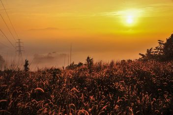 Beautiful sunrise over a misty field - бесплатный image #186473