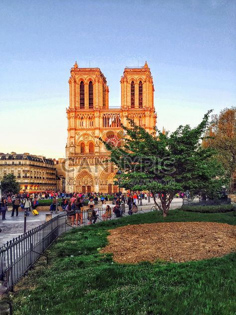 Notre Dame cathedral in Paris - бесплатный image #186853