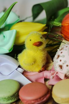 Decorative Easter chicken and macaroons - image #187553 gratis