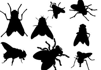 Free Fly Silhouette Vector - vector gratuit #200403