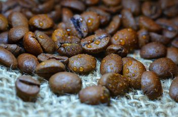 Coffee beans - Kostenloses image #201083