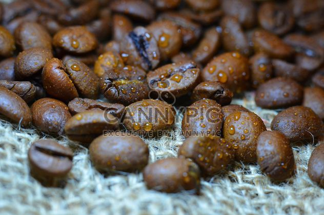 Coffee beans - Free image #201083