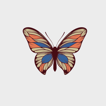Free Vector Butterfly - Kostenloses vector #201873