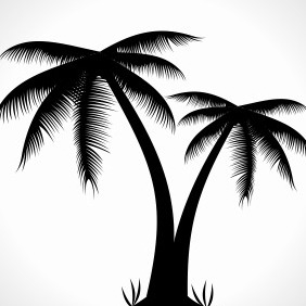 Palm Tree Silhouette - Free vector #204133
