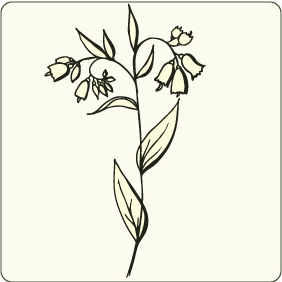 Floral 99 - Free vector #206313