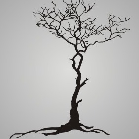 Root Tree - Free vector #210213