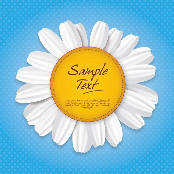 Camomile Sign - Free vector #210303