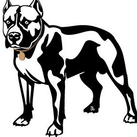 Pit Bull Vector Image - Free vector #216513