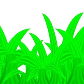 Green Vector Plant Or Grass - vector gratuit #216693