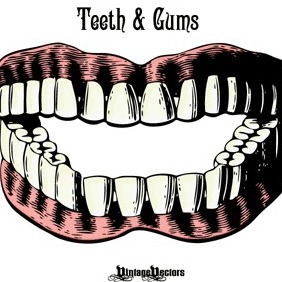 Set Of Teeth And Gums - Kostenloses vector #216723