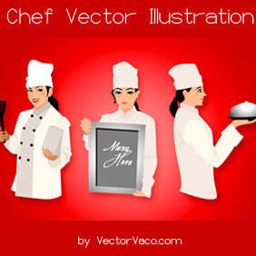 Chef Vector Illustration - vector gratuit #216863