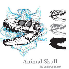 Animal Skull - vector #220443 gratis