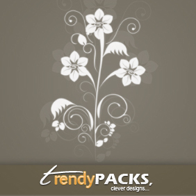 Floral Ornaments - vector gratuit #220993