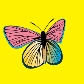 PM Butterfly - vector gratuit #222173