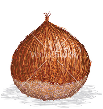 Free closeup of single chesnut isolated in white vector - Kostenloses vector #233793