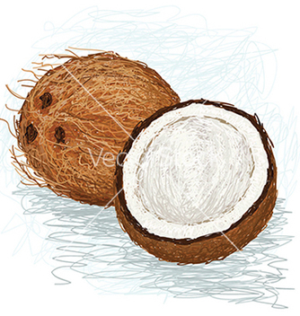 Free closeup of a half and whole coconut vector - vector gratuit #233863